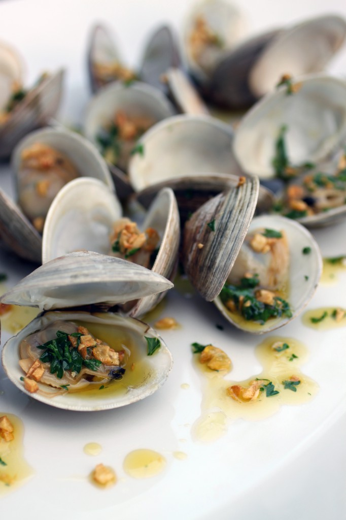 Grilled Clams with Garlic Drizzle Recipe