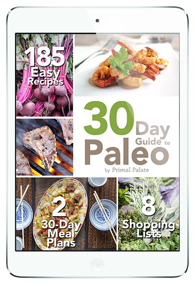 30 Day Guide to Paleo meal Plan - ipad low res copy