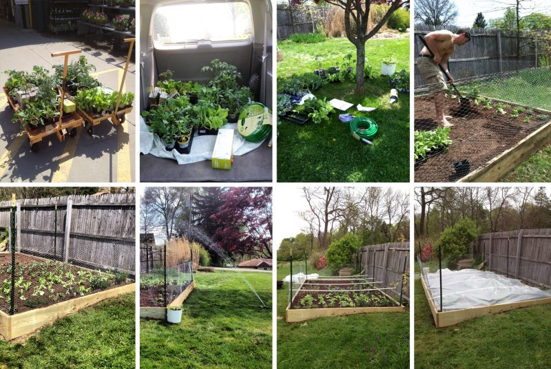 To Build Raised Garden Beds On A Slope, How To Build Raised Garden Bed On Slope