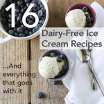 16 dairy free ice cream recipes