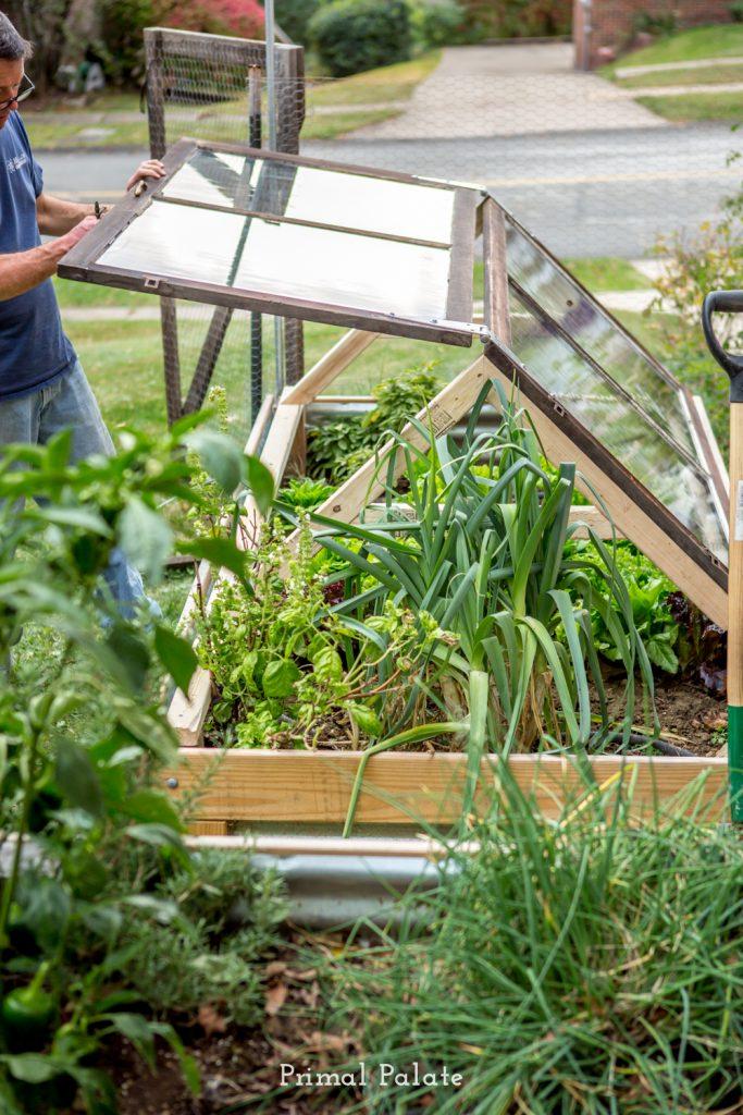 how to build a coldframe garden