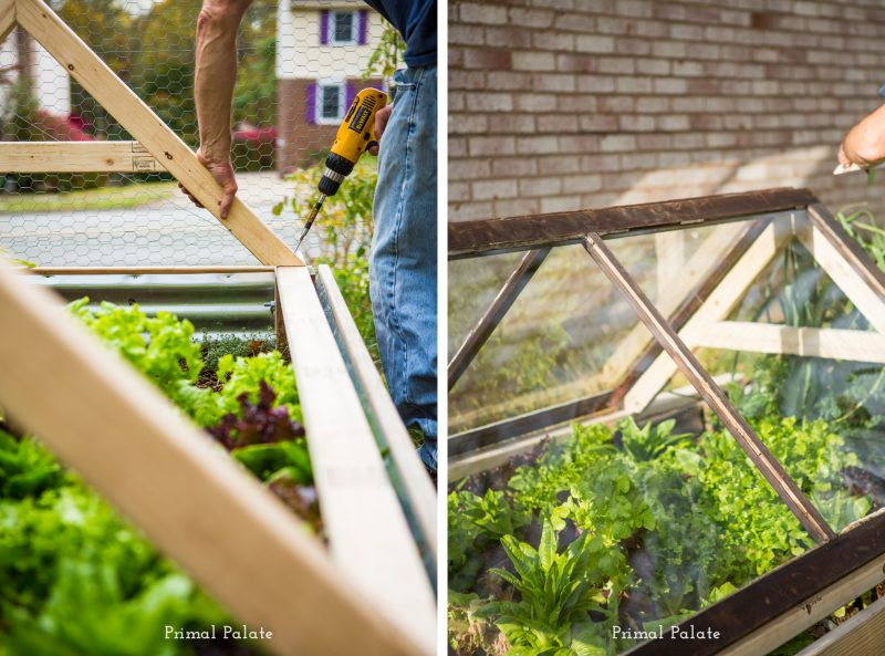 How to build a cold frame garden
