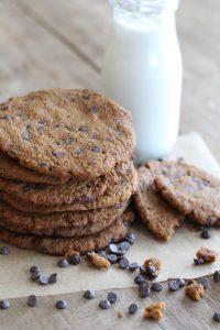 paleo Jumbo pumpkin chocolate chip cookies