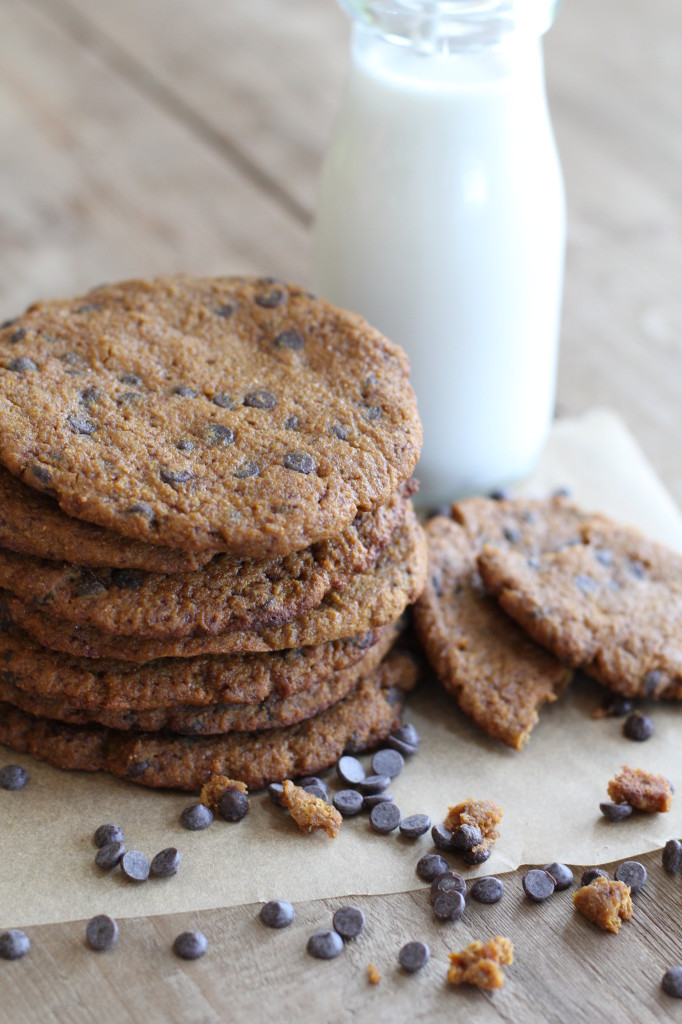 paleo Jumbo pumpkin chocolate chip cookies