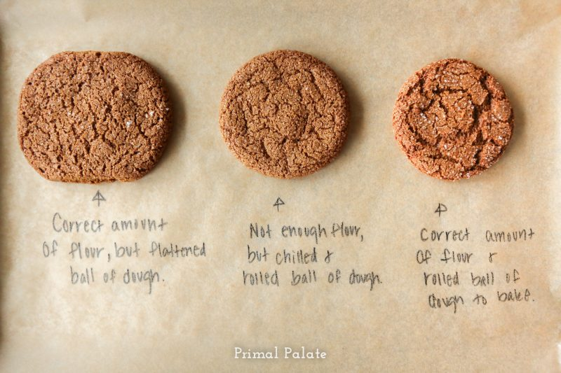 Paleo Gingersnaps | Grain-free Christmas Cookies-13