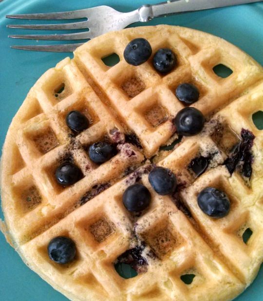 Blueberry Waffles Reviewed by Eat Sleep Live Paleo