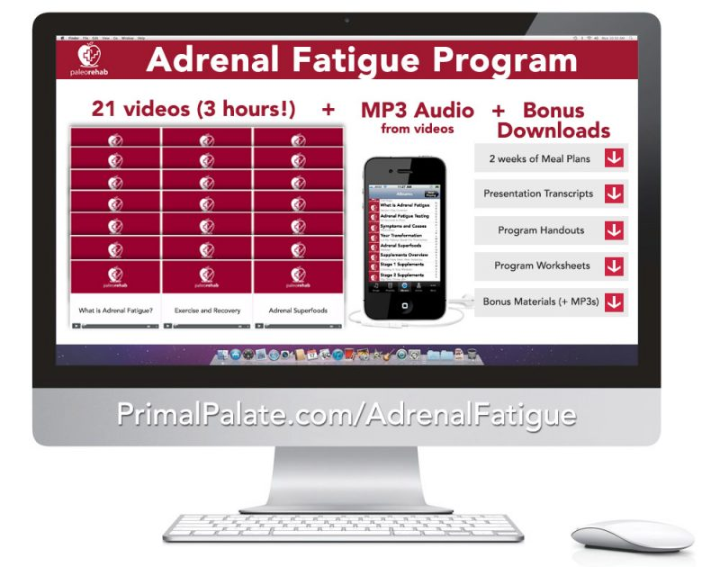 Adrenal Fatigue Program 1