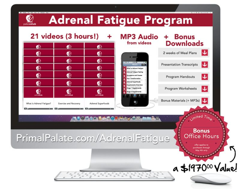 Adrenal Fatigue Program