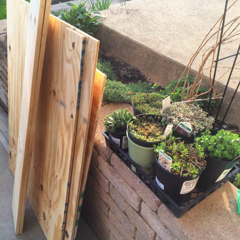 DIY green roof supplies