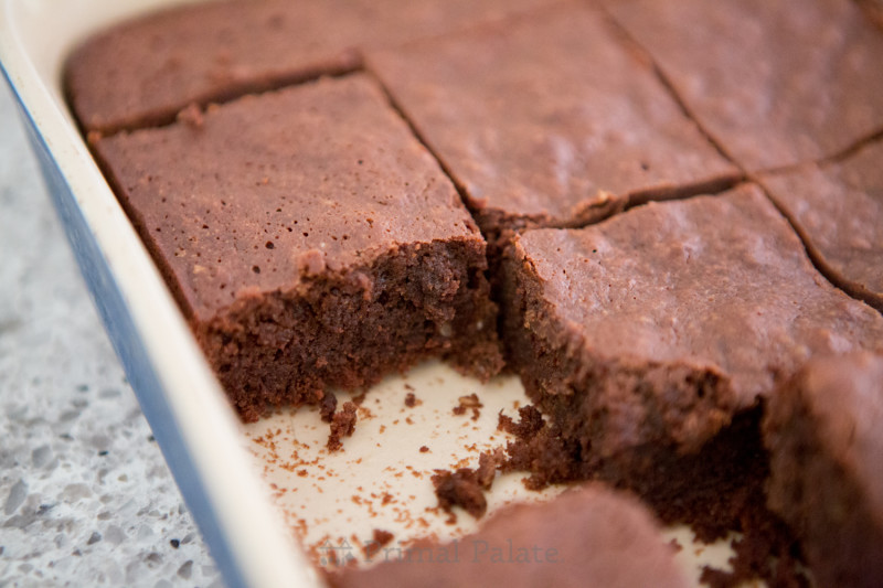 Paleo Nut-free Fudgy Brownies-7