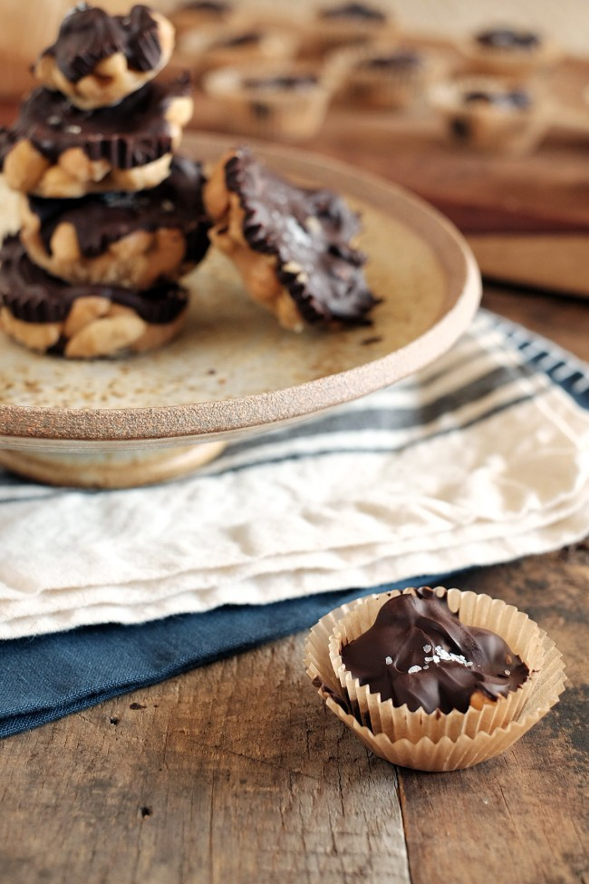 Salted Chocolate Caramel Cashew Clusters - Primal Palate | Paleo ...