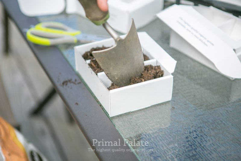 Primal Palate Organic Spices - Seed Starter Boxes-12