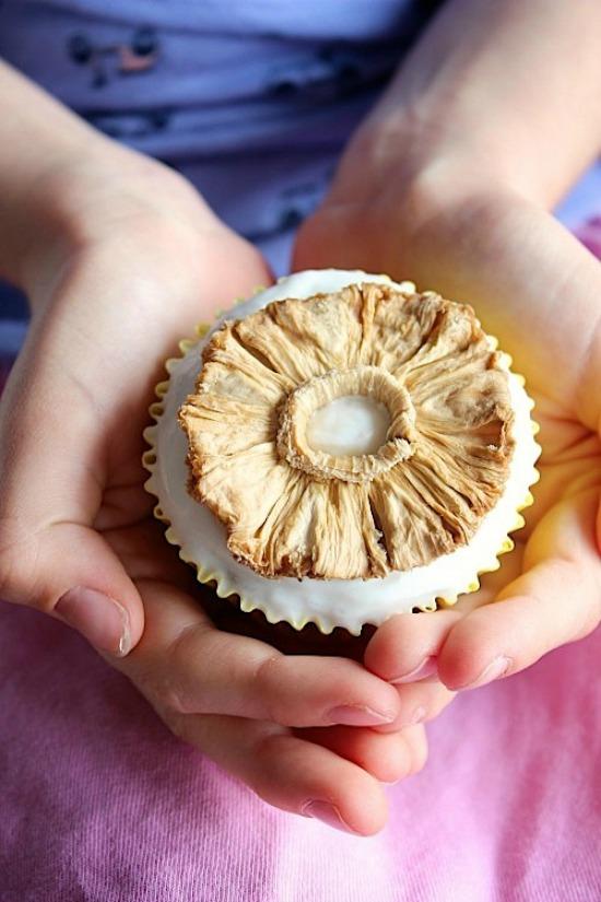 "Hummingbird Muffins with Coconut Yogurt ""Frosting"" Recipe"