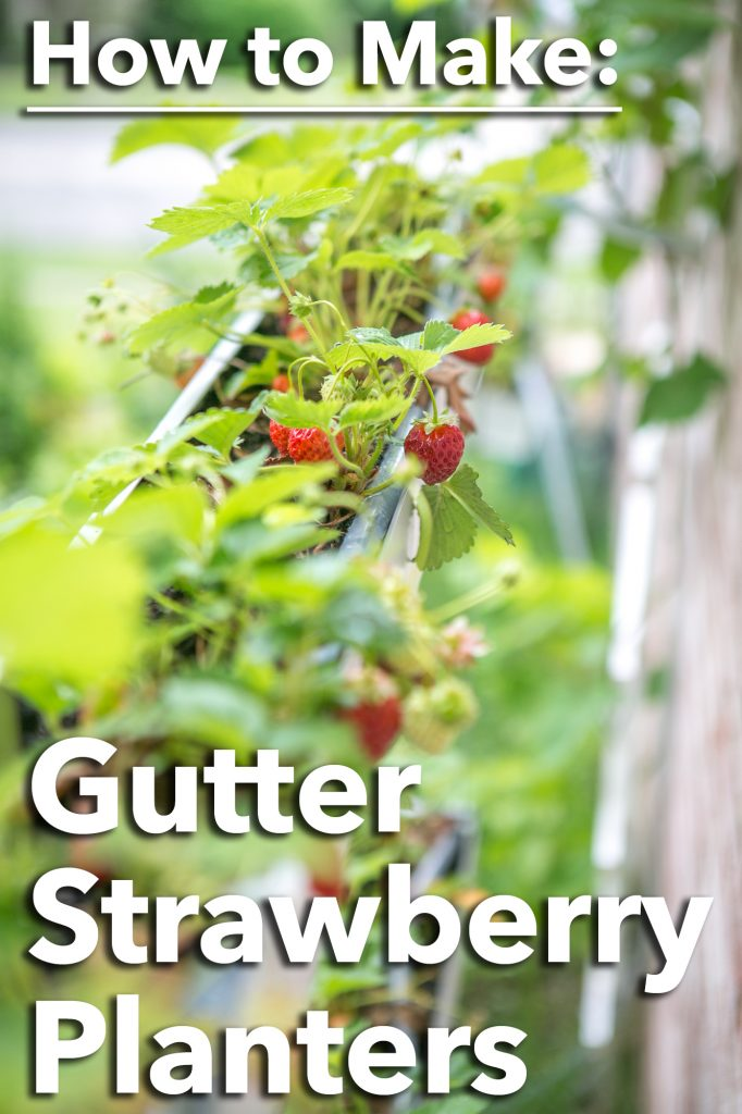 How to make Gutter Strawberry Planters using standard aluminum gutters and basic hand tools - SO COOL!